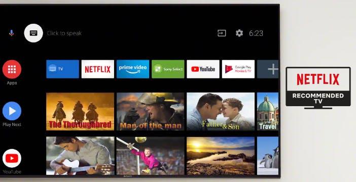 I migliori TV 2020 certificati da Netflix: inclusi Panasonic, Samsung e Sony. Misteriosamente assenti Philips e LG