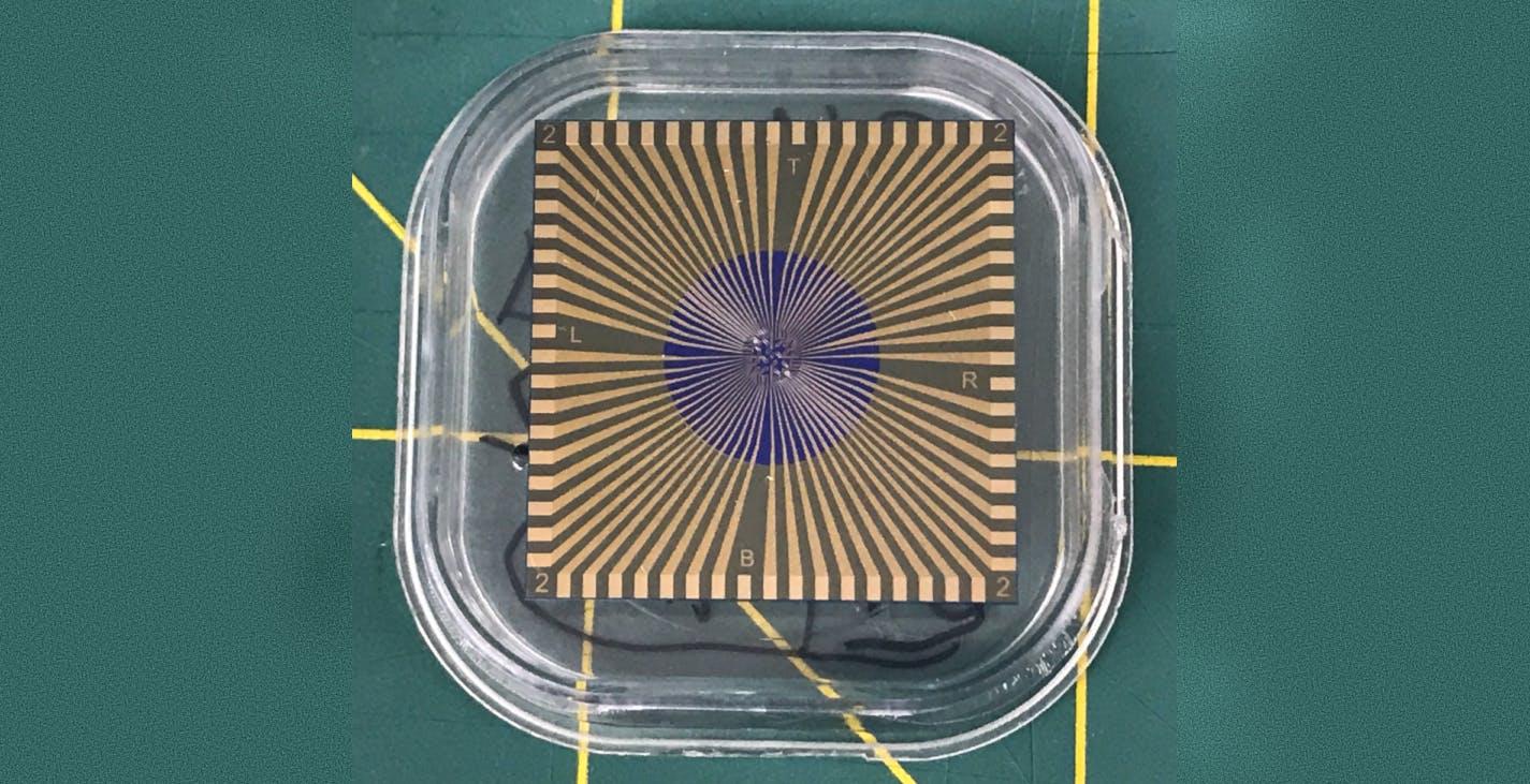 Questo sensore in grafene sostituisce il tampone e riesce a distinguere il COVID-19 da una banale influenza