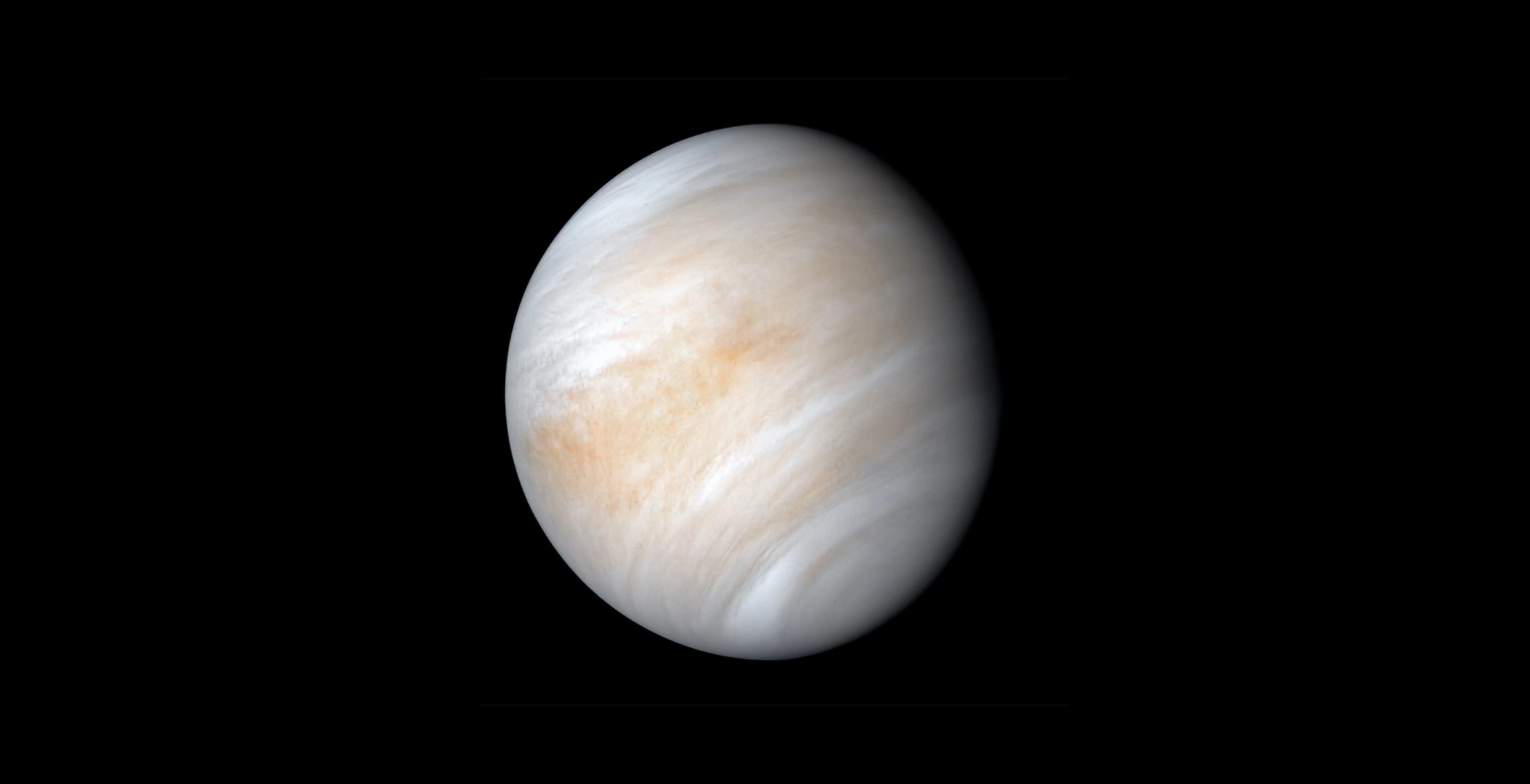 Nell'atmosfera di Venere potrebbe esserci la vita