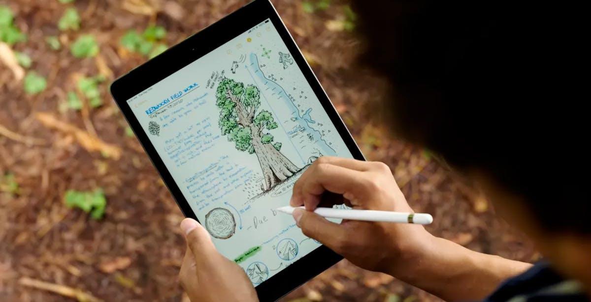Il nuovo iPad è il tablet perfetto per le scuole. Ma 32 GB sono pochi pure per gli studenti