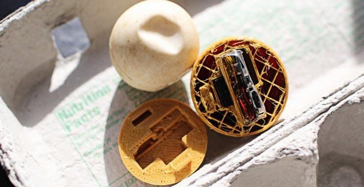 Finte uova di tartaruga stampate in 3D con un GPS all'interno. La tecnologia aiuta a scovare i bracconieri in Costa Rica