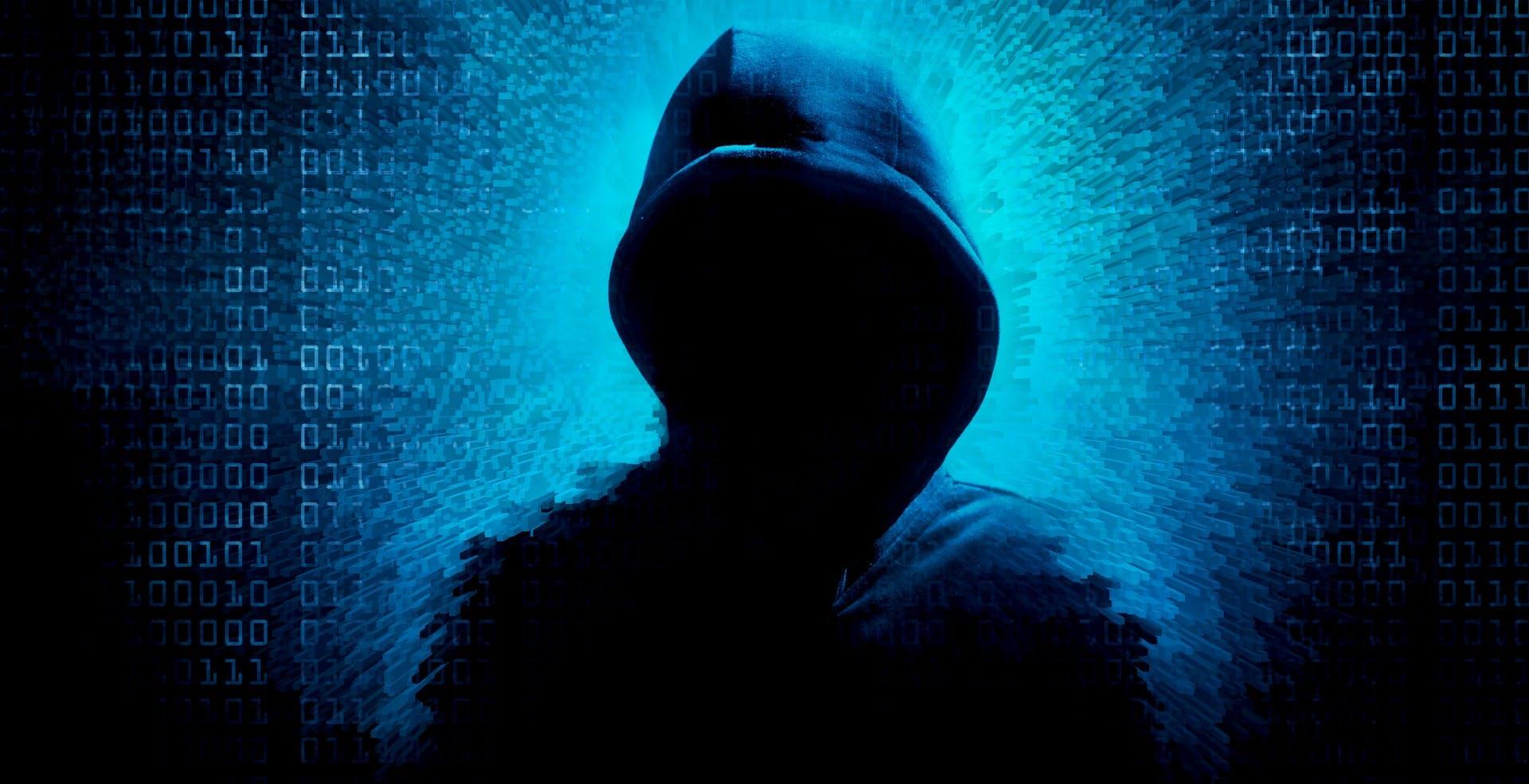 Chiuso DarkMarket, il più grande mercato nero nel dark web: vendeva denaro contraffatto e carte rubate