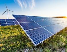 Pannelli immersi tra ulivi e aranceti: in Sicilia due parchi solari per fornire energia verde ad Amazon