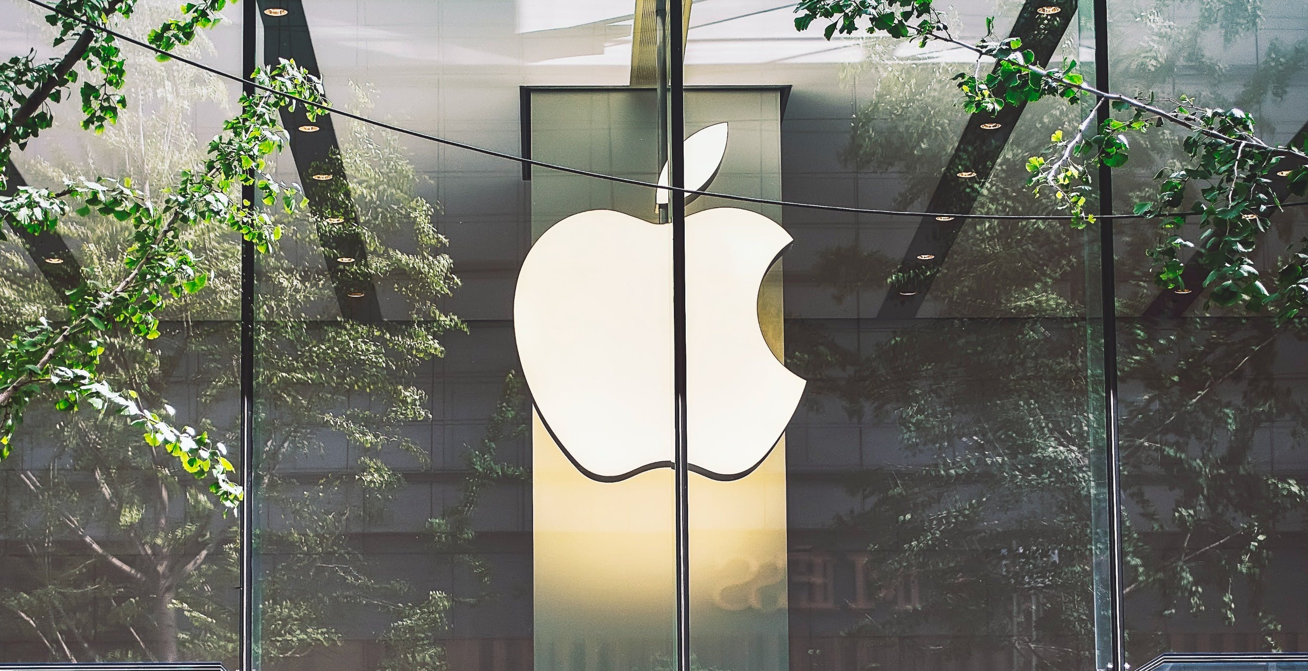 Nell'ultimo trimestre Apple è cresciuta di un irripetibile +54%. Solo il segmento iPad ha fatto +79%