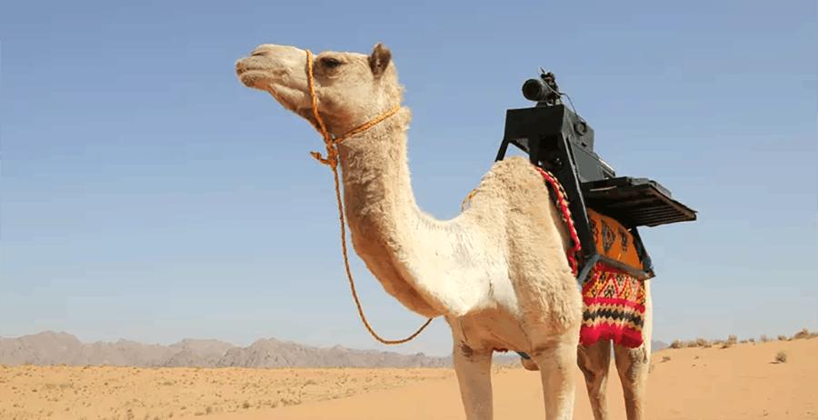 Un dromedario ha fotografato i luoghi inaccessibili dell'Arabia Saudita grazie al 5G