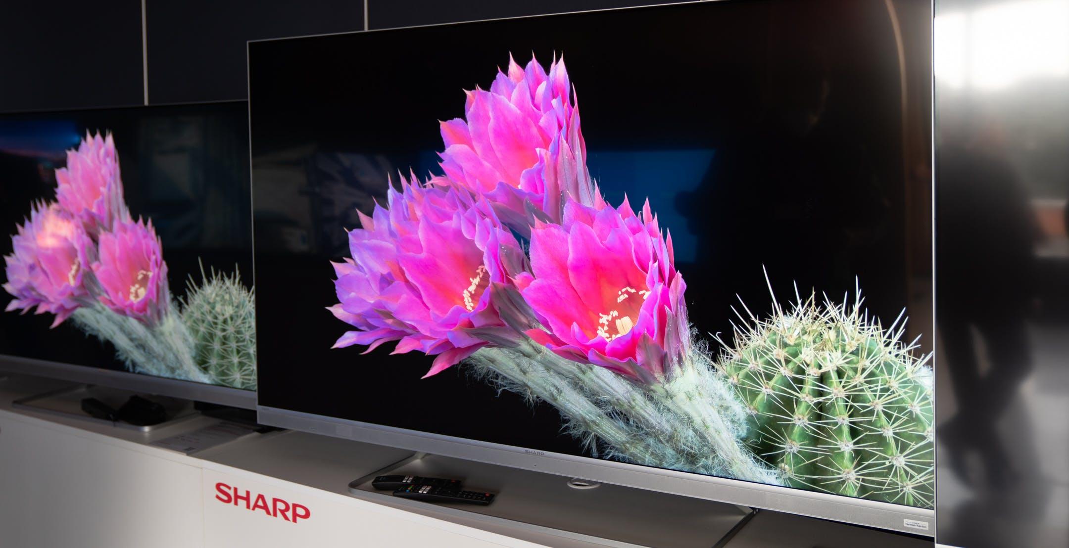 Sharp torna con decisione sul mercato italiano: TV, audio, purificatori e forni