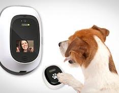 CES 2016, le novità per gli animali domestici: dal videogame al telefono per cani e gatti