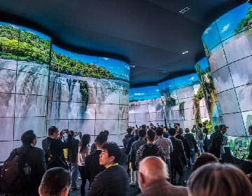 Il canyon OLED LG è uno spettacolo. E si può pure comprare