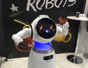 Esoscheletri, accompagnatori e animali domestici: a ognuno il suo robot personale