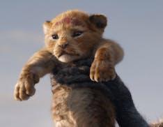 Le novità Disney+ di aprile: Il Re Leone, Be Our Chef e Il Delfino Echo