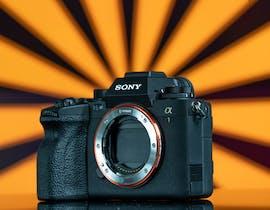 La prova della Sony A1, la camera migliore di sempre: foto, raffiche, video 8k, 4k ralenti