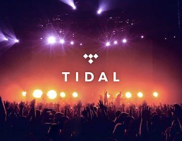 Square, la società del fondatore di Twitter Jack Dorsey, ha comprato Tidal