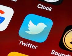 Annullare l'invio di un tweet e le Collezioni: cosa potrebbe includere il primo abbonamento di Twitter