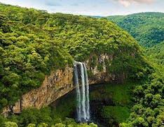 L'Amazzonia brucia e gli scienziati lanciano l'allarme: la foresta non basta più ad assorbire così tanta CO2