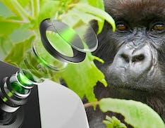 Niente graffi e più luce verso il sensore: il vetro Gorilla arriva sulle lenti degli smartphone