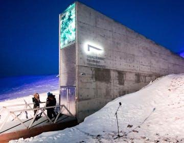 Un caveau sotto il ghiaccio per proteggere la musica di tutto il mondo per oltre 1000 anni