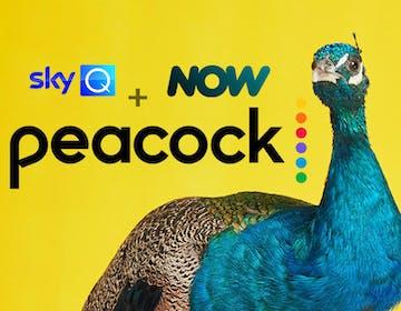 Peacock sbarca in Italia a fine anno per i clienti Sky Q e NOW. Sarà gratis con pubblicità