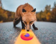 Firefox ha scoperto come aggirare i blocchi di Windows 10. Può diventare browser predefinito con un solo clic