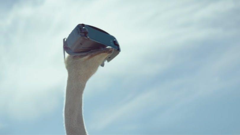 Il divertente spot del Galaxy S8 e della realtà virtuale: lo struzzo vola!
